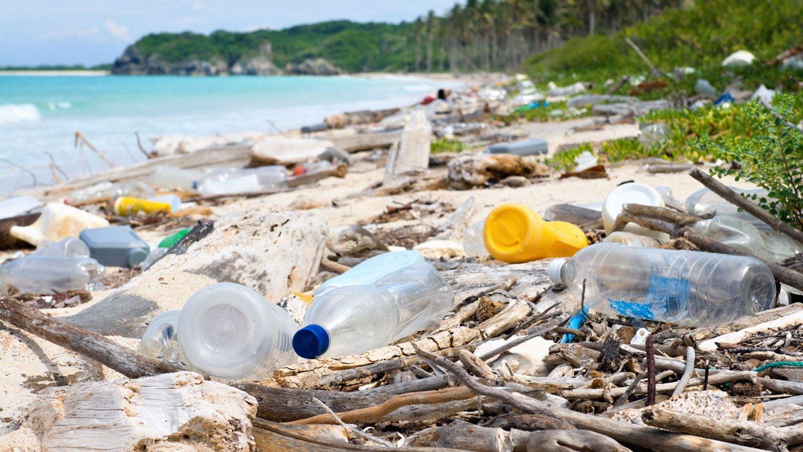 海に漂う「プラスチックごみ」の深刻すぎる影響 | 政策 | 東洋経済 ...