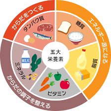 五大栄養素! | うおのまち薬局長崎