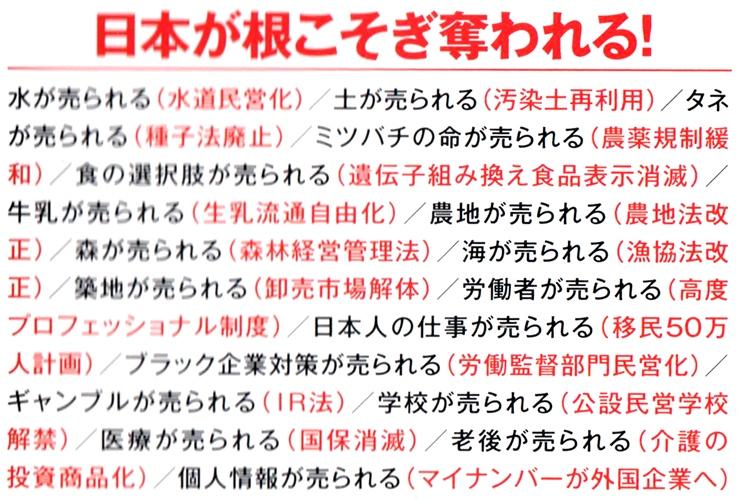 日本が売られる』購読 | あちゃタイムズ