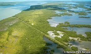 エバーグレーズ国立公園 Everglades National Park | アメリカ 旅行 ...