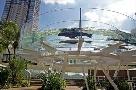 サンシャイン水族館の情報 WEB水族館