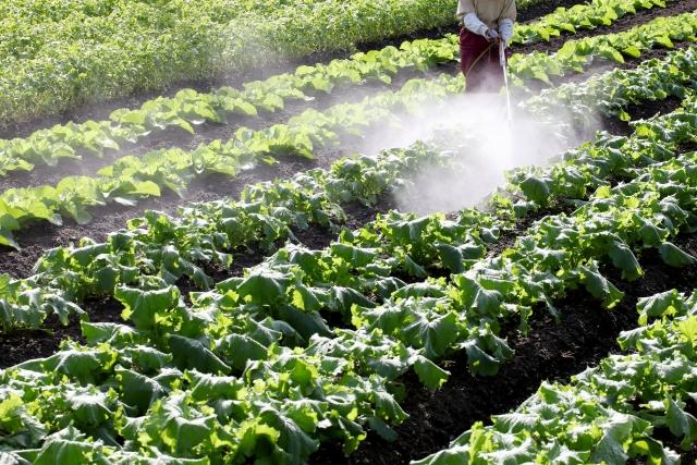 日本の残留農薬基準は本当に世界と比べて甘く危険なのか? | 農ledge