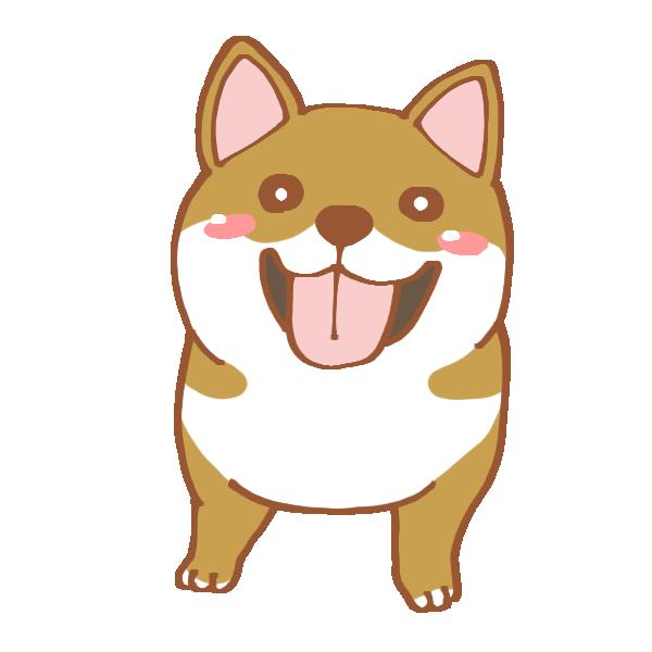 柴犬のイラスト | かわいいフリー素材が無料のイラストレイン