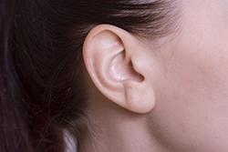 耳の病気 もり耳鼻咽喉科クリニック   大阪府高槻市   中耳炎 耳鳴 難聴