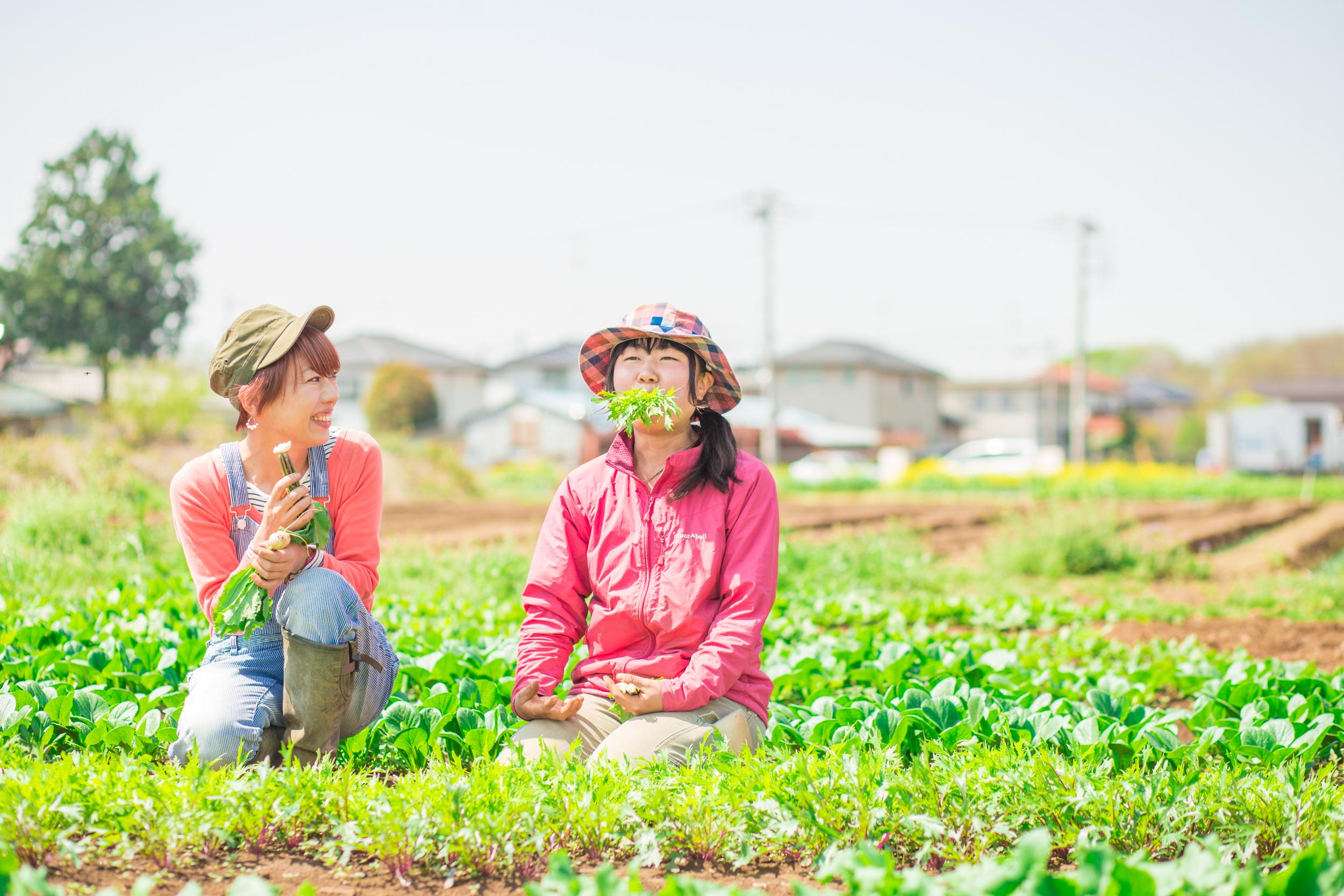 久松農園オフィシャルサイト | 農家であり料理人であるということ