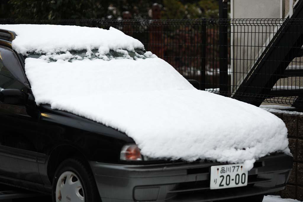 ゆんフリー写真素材集 : No. 13830 車の雪 [日本 / 東京]