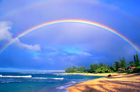 知ると楽しい!ハワイ雑学5 – お出かけ日和