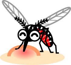 血を吸っている蚊のイラスト|蚊|8月|季節|素材のプチッチ